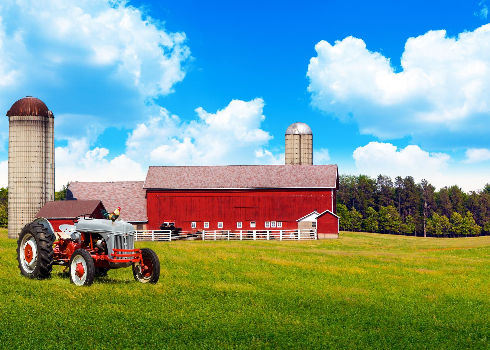 Beaumont, TX. Farm & Ranch Insurance